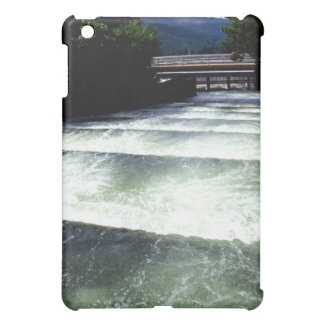 Ladder iPad Mini Cases