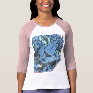 Ladies 3/4 Sleeve Raglan (Fitted) Tshirts