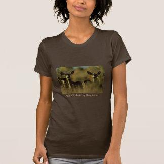 Ladies SS T / Mule Deer Herd Tshirts
