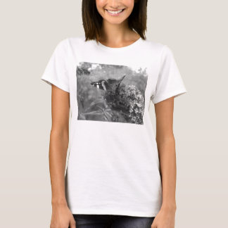 Ladies T-Shirt - Admiral Butterfly  Black & White