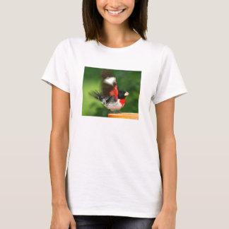 Ladies T shirt - Grosbeak