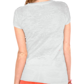 Ladies We Do It In the Park burnout tee