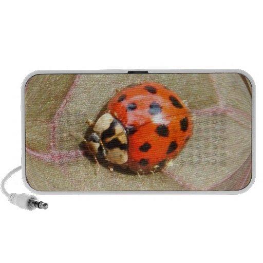 Lady Bug 226 ~ speaker