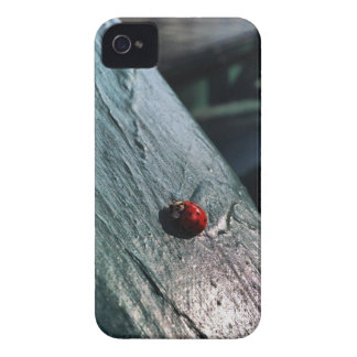 Lady Bug Case-Mate iPhone 4 Cases