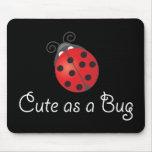 Lady Bug - Cute as a Bug