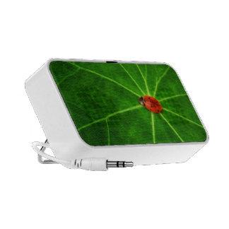 Lady Bug Doodle Custom Speaker