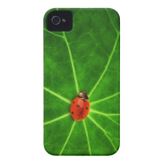 Lady Bug Iphone 4S Case iPhone 4 Covers