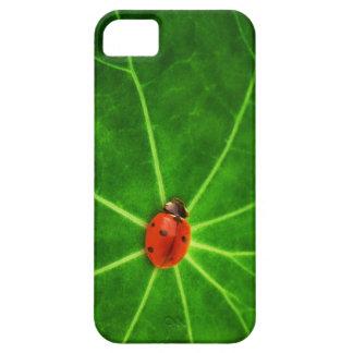 Lady Bug Iphone 5S Case iPhone 5 Case