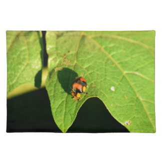 LADY BUG ON LEAF QUEENSLAND AUSTRALIA PLACEMAT