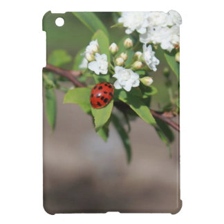 Lady Bug resting near so white flowers in bloom iPad Mini Covers