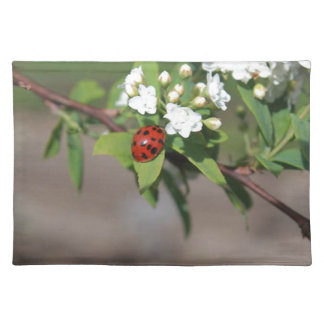 Lady Bug resting near so white flowers in bloom Placemat