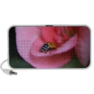 Lady Bug Travel Speaker