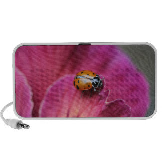 Lady Bug Notebook Speakers