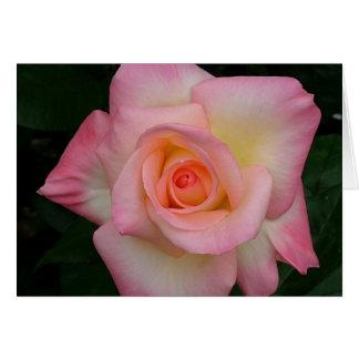 Lady Di Rose Card