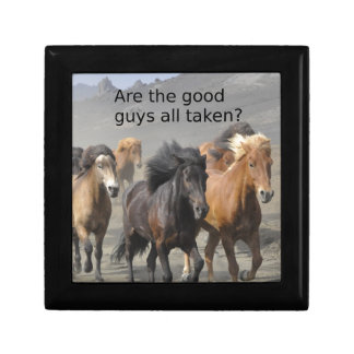 Lady Horse Gossip: Are The Good Guys All Taken? Gift Box