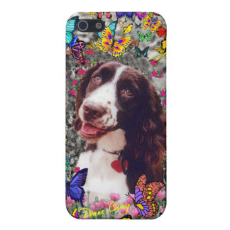 Lady in Butterflies - Brittany Spaniel Dog iPhone 5/5S Cases