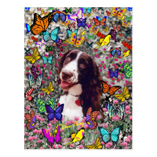 Lady in Butterflies  - Brittany Spaniel Dog Postcards