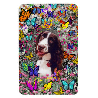 Lady in Butterflies - Brittany Spaniel Dog Rectangular Magnets