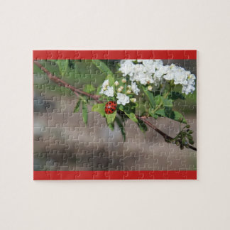 Lady in White Jigsaw Puzzle