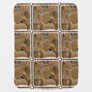 Lady Lioness Buggy Blanket