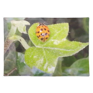 Lady nose ladybird material table set placemat