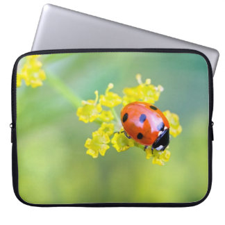 lady on top laptop sleeve