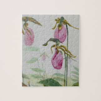 Lady Slippers Jigsaw Puzzle