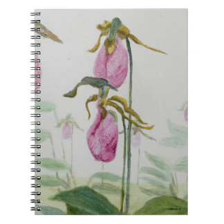 Lady Slippers Notebook