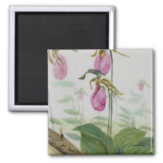 Lady Slippers Square Magnet