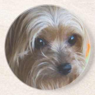 Lady Yorkshire Terrier Drink Coaster