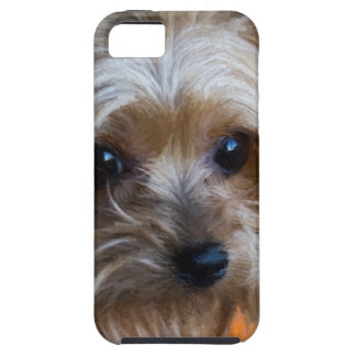 Lady Yorkshire Terrier Tough iPhone 5 Case