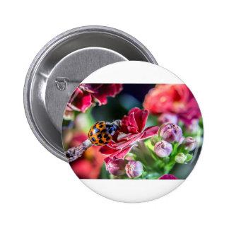 Ladybird 6 Cm Round Badge