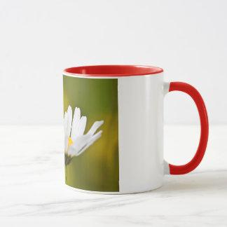 Ladybird in Oxeye Daisy - Mug