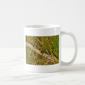 Ladybird in the grass picture coffee mug
