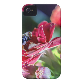 Ladybird iPhone 4 Case