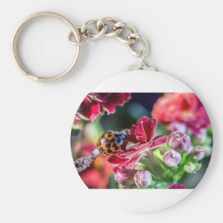 Ladybird Key Ring