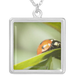 Ladybird on leaf,Ladybug on leaf Square Pendant Necklace