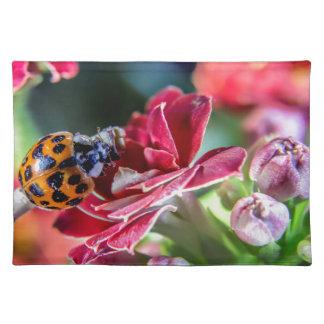 Ladybird Placemat