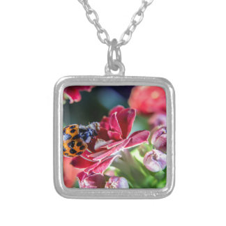 Ladybird Silver Plated Necklace