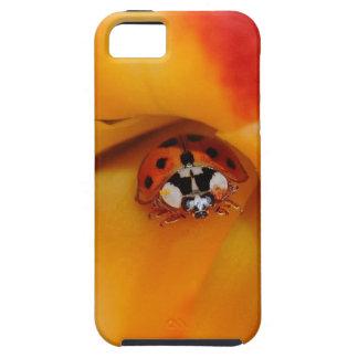Ladybird Tough iPhone 5 Case