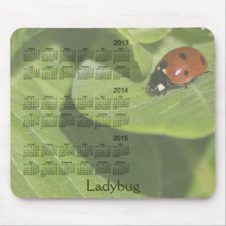 Ladybug 3 Year 2013-2015 Calendar Mousepad
