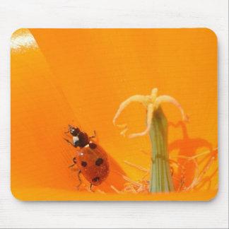 Ladybug and Poppy Mouse Pad