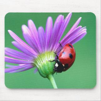Ladybug And Purple Flower Mouse Pad