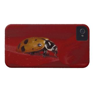 Ladybug Beetle. (Hippodamia convergens) 2 iPhone 4 Case-Mate Case