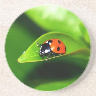Ladybug Beverage Coasters