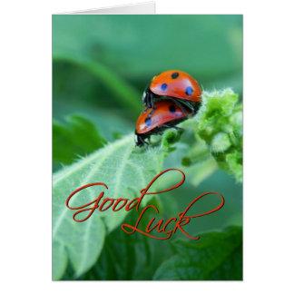 Ladybug Couple - Good luck Card