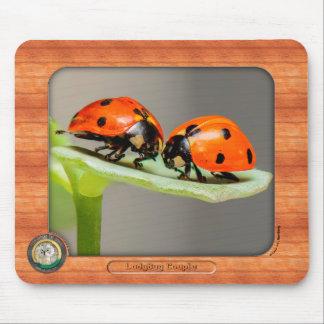 Ladybug Couple Mousepad