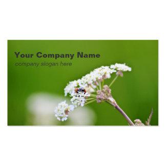 Ladybug Custom Business Cards Business Card Template