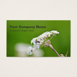 Ladybug Custom Business Cards