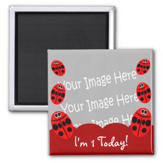 Ladybug First Birthday Photo Magnet Party Favors